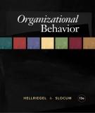 Ebook Organizational behavior (13th edition): Part 1