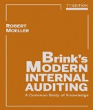 Ebook Brink's modern internal auditing (7th edition): Part 1