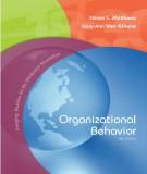 organizational behavior (4e): part 1
