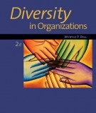 Ebook Diversity in organizations (2nd edition): Part 1