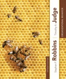 Ebook Organizational behavior (15th edition): Part 2