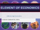 Lecture Element of economics - Chapter 1: Introducing economics
