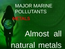 Lecture Marine environmental studies - Topic: Major marine pollutants - Metals