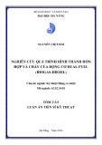 Tóm tắt luận văn Thạc sĩ Kỹ thuật: Nghiên cứu quá trình hình thành hỗn hợp và cháy của động cơ dual fuel (biogas-diesel)