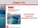 Lecture Auditing and assurance services (Second international edition) - Chapter 2: The financial statement auditing environment