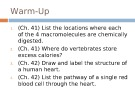 Lecture AP Biology - Chapter 42A: Circulation