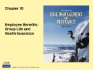 Lecture Rick management and insurance (11th edition): Chapter 16 - George Rejda