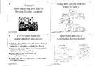 Bài giảng Quản trị dịch vụ (Service management): Chương 9 - ThS. Trần Kim Ngọc