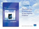 Lecture Principles of Managerial finance (4th edition): Chapter 1 - Lawrence J. Gitman