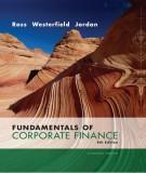 fundamentals of corporate finance (8e): part 2