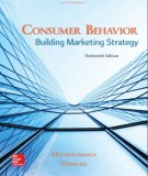 consumer behavior -  building marketing strategy (13th edition): part 1