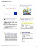 Bài giảng Cấp nước quy mô nhỏ: Quản lý chất lượng nước - PGS.TS. Nguyễn Việt Anh