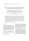 Nghiên cứu khả năng hấp phụ kim loại nặng và Asen của laterit đá ong huyện Tam Dương, tỉnh Vĩnh Phúc