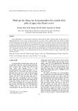 Đánh giá tác động của Acetaminophen lên sự phát triển phôi cá ngựa vằn (Danio rerio)