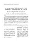 Xây dựng quy trình phân tích đột biến các exon 19, 20, 21 thuộc gen EGFR của bệnh nhân ung thư phổi ở Việt Nam