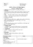 Giáo án tiếng Anh lớp 9 chương trình thí điểm - Unit 1: Local environment