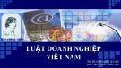 Bài giảng Luật doanh nghiệp Việt Nam: Bài 1 - TS. Bùi Quang Xuân