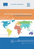 Báo cáo tổng quan về tình hình di cư của công dân Việt Nam ra nước ngoài