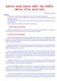 Kháng sinh trong điều trị nhiễm trùng vùng hàm mặt - BS Huỳnh Văn Dương
