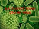 Bài thuyết trình Virus