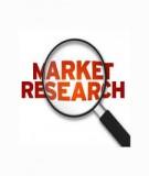 Hoạt động nghiên cứu phát triển thị trường