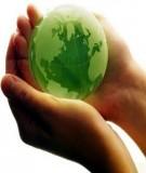 Luật Bảo vệ môi trường 1993