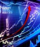 Phân tích cơ hội đầu tư cổ phiếu của Công ty Cổ phần Nhựa và Mội trường xanh An Phát