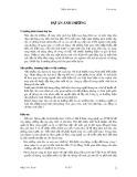Thẩm định dự án - Dự án ánh dương