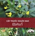 Ebook Cây thuốc người Dao - Ba Vì