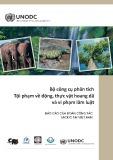 Bộ công cụ phân tích tội phạm về động, thực vật hoang dã và vi phạm lâm luật: Báo cáo của đoàn công tác UNODC tại Việt Nam