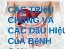 Bài giảng Các triệu chứng và các dấu hiệu của bệnh gan