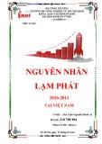Tiểu luận: Nguyên nhân lạm phát 2010-2011 tại Việt Nam