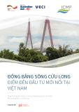 Đồng bằng Sông Cửu Long: Điểm đến đầu tư mới nổi tại Việt Nam