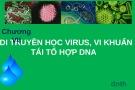 Bài giảng chương 7: Di truyền học virus, vi khuẩn tái tổ hợp DNA