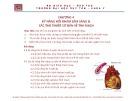 Bài giảng Tiền lâm sàng về kỹ năng lâm sàng - Chương 4: Kỹ năng hỏi khám lâm sàng và các thủ thuật cơ bản về tim mạch