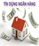 Thông tin bất cân xứng trong hoạt động tín dụng tại Việt Nam