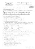 Đề kiểm tra HK 2 môn Lịch sử 10 năm 2017 - THPT Lương Ngọc Quyến - Mã đề 209