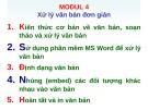 Ôn tập Tin học cơ bản: Modul 4 - ThS. Võ Minh Đức