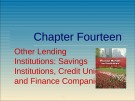 Lecture Financial markets and institutions: Chapter 14 - Anthony Saunders, Marcia Millon Cornett