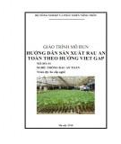 Giáo trình mô đun Hướng dẫn sản xuất rau an toàn theo hướng Viet Gap - Phần 1