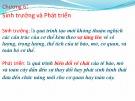 Bài giảng Chương 6: Sinh trưởng và phát triển