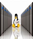 Hệ điều hành Linux - Bài 5: Các tập lệnh Linux