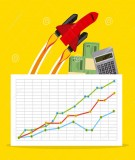 hướng dẫn tóm tắt về kinh tế học vĩ mô (tài liệu dịch)