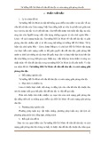 Tiểu luận tư tưởng Hồ Chí Minh: Tư tưởng Hồ Chí Minh về vấn đề dân tộc và cách mạng giải phóng dân tộc