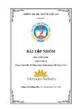Bài tập nhóm: Tìm hiểu về Tổng công ty Hàng không Việt Nam-CTCP