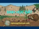 Bài giảng Thổ nhưỡng: Chương Sinh học đất - Võ Thanh Phong