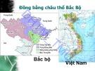 Bài giảng Cơ sở văn hóa Việt Nam: Chương 4.1 - ĐH Thương Mại