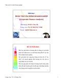 Bài giảng Phân tích tài chính doanh nghiệp - TS. Lê Hoàng Vinh