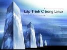 Bài giảng Hệ điều hành linux: Chương 8 - Ngô Văn Công