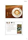 Bài giảng Công nghệ sau thu hoạch cà phê, ca cao - ThS. Lương Hồng Quang